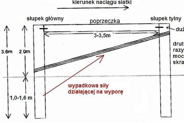 wypora
